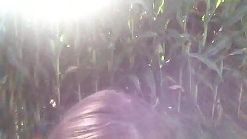 Unfathomable throating in the corn field